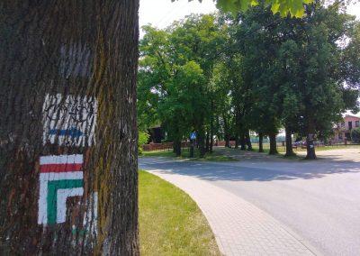 Szlak pieszy Bitwy nad Bzurą Łęczyca-Stryków