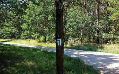 """Szlak pieszy """"Bitwy nad Bzurą"""" – informacje"""