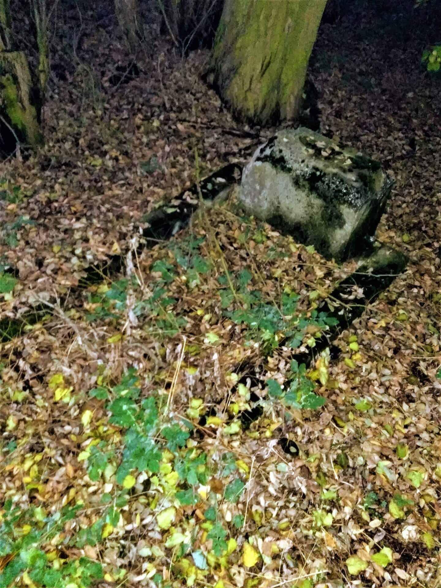 znane i osobliwe cmentarze w Centrum Polski